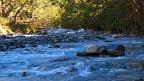 Hunter River West Branch
