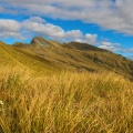 Tussock and unnamed ridge