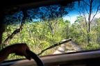 Sand road through cerrado