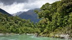 Forest and mountains at Waiatoto River
