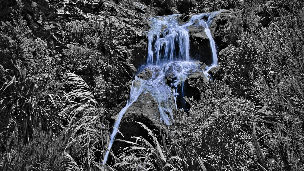 Timber Gully Waterfall in black and white