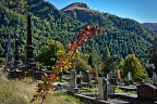 Arrowtown Cemetery and German Hill