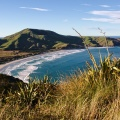 Mt Charles, Allans Beach, and Cape Saunders