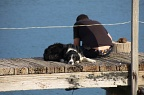 Fisherman and dog on a jetty