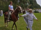 Riding Peruvian Paso horse