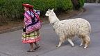 Quechua woman with llama
