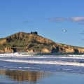 Cornish Head and seagull from Waikouaiti Beach