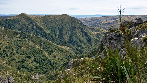 Devils Staircase and Point 700 metres above Cave Creek