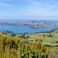 Panorama of Otago Peninsula from Mount Cargill lookout