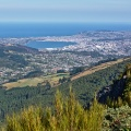 Dunedin from Mount Cargill lookout