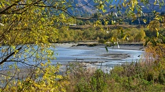 Shotover River meander framed with willow leaves