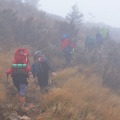 Walking in fog along Miners Track