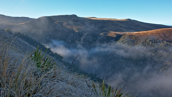 Woolshed Creek gorge on foggy morning