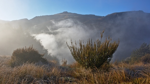 Fog above Woolshed Creek gorge