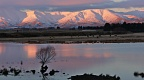 Snowy Kakanui Mountains, farmland and pond in evening sunlight