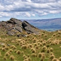 Jagged rocks among tussock