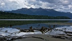 Driftwood in the lake and Princess Mountains