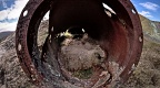 Inside old rusty pipe