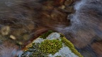 Mossy rock and flowing water