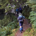 Tramping Routeburn Track