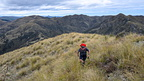 Tussock travel along the ridge